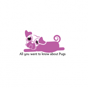 Best Pug Posts