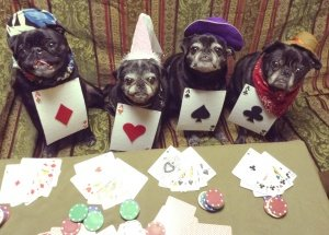 Four of a Kind!  Dogs playing poker.
