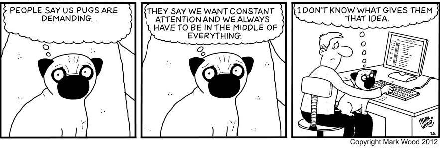 Pugs6